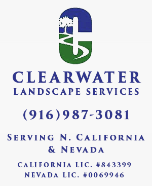 Clearwater Landscaping